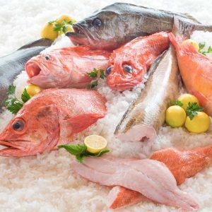 ماهیهای آلوده به جیوه