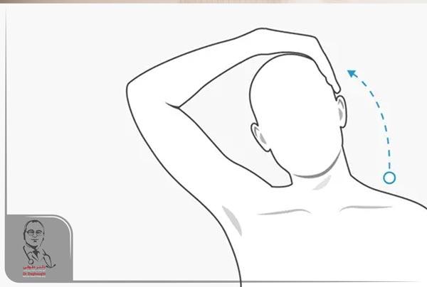 تمرین انعطاف گردن